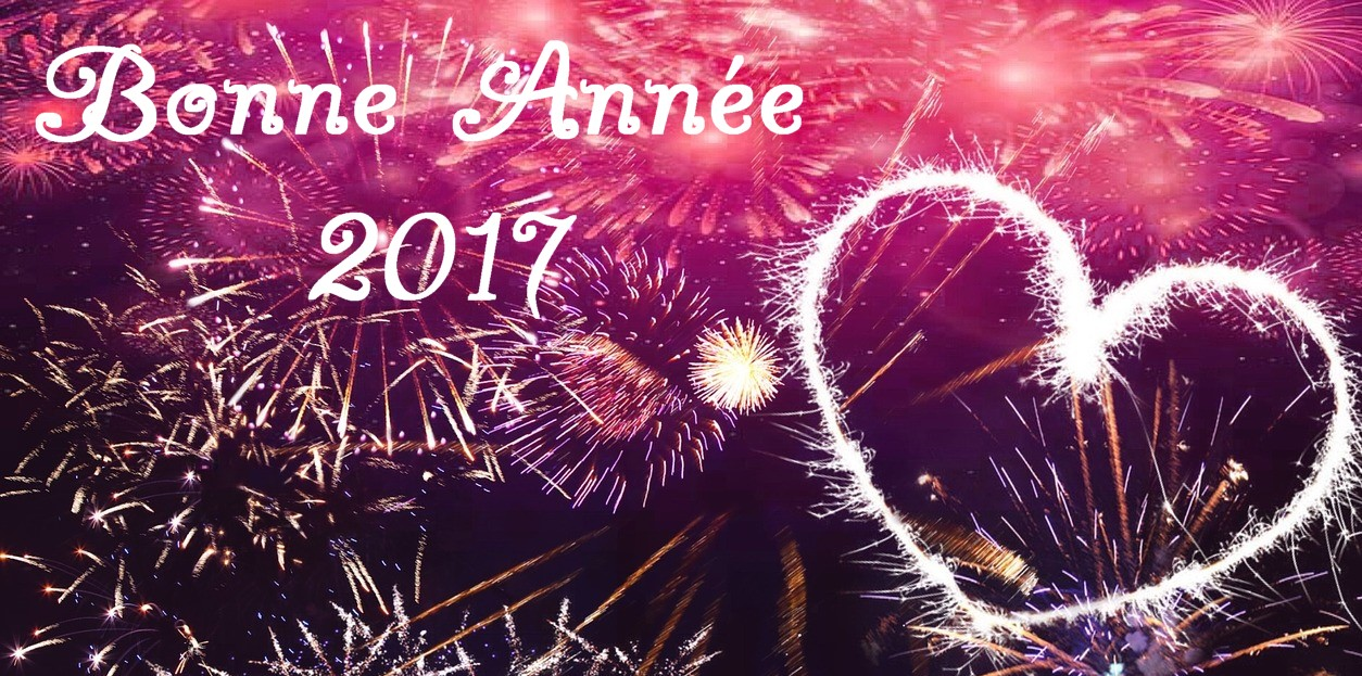 Bonne Année 2017 avec Db - Animations